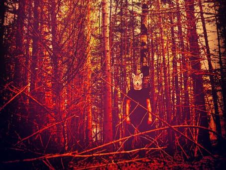 Cryote | Good Medicine (new single)