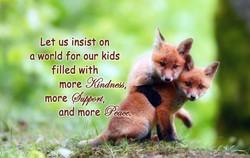Fox More Kindness