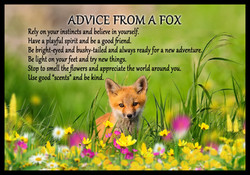 Kindness Quote Advice from a Fox2