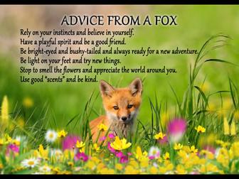FOX PTA NEWSFLASH MAY 2020