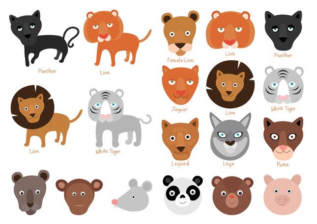 hayvanlar-03.jpg