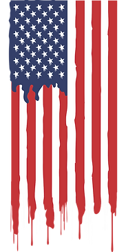 american-flag-3001893_1280.png