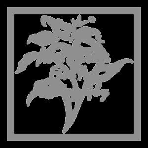 Logo AP Fine Art SQ 18x18.png
