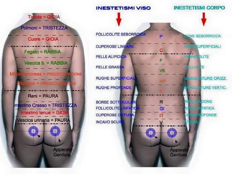 Come parla la tua schiena? 3°, ed ultima parte (zona lombare)
