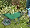 GardenerGreg.com | Everything Garden Maintenance in Bristol