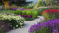 Beautiful Tyntesfield Garden
