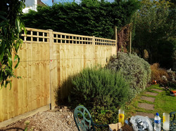 Trellis Top Vertical Feather Edge Close Board Fencing - Front View