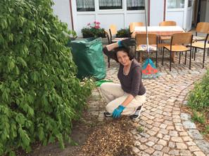 Vereinte Gartenarbeit