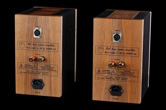 Red Haze Monoblock Amplifier rear