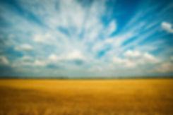 photo-of-grass-field-1227513 (1).jpg