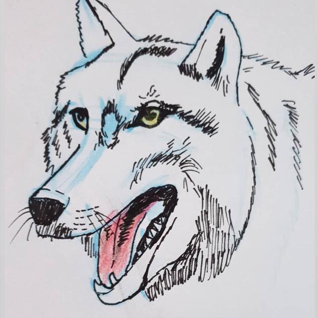 Fanart von Svenja (13)