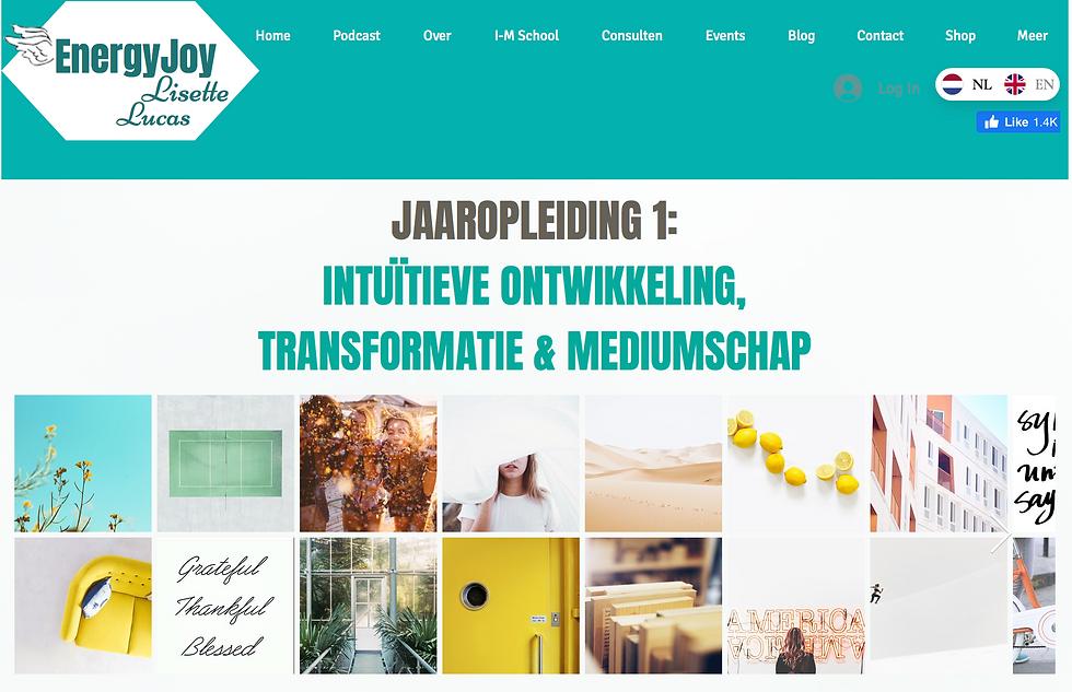 Jaaropleiding 1-2021 EnergyJoy.png