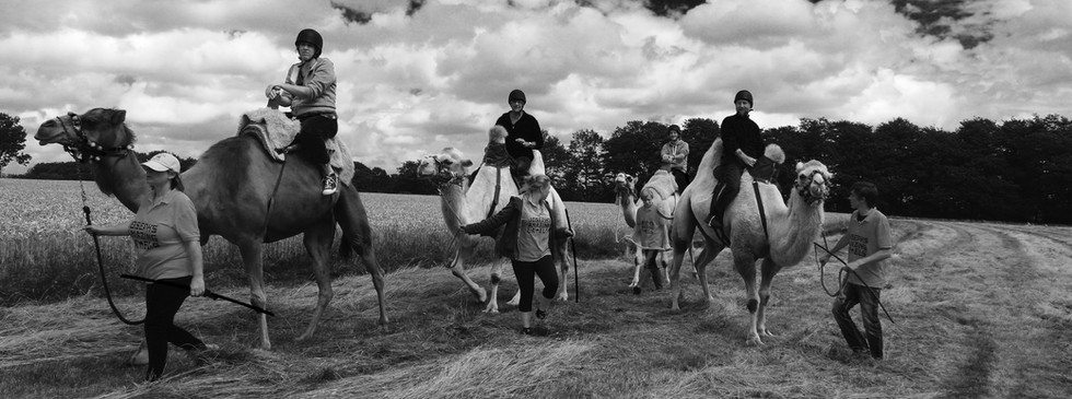 Camel riding in front of Talton Lodge & Talton House