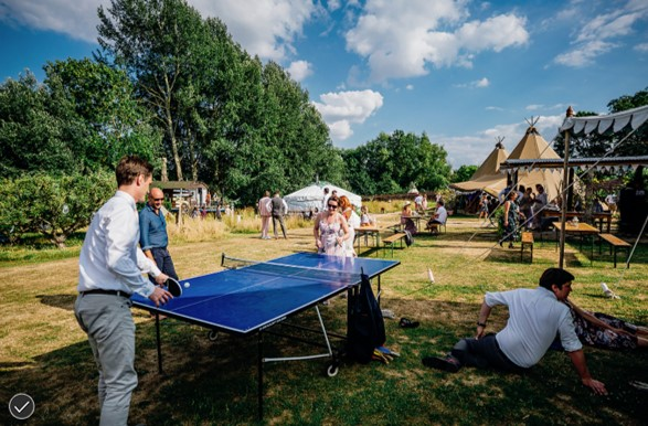 Table tennis wedding style