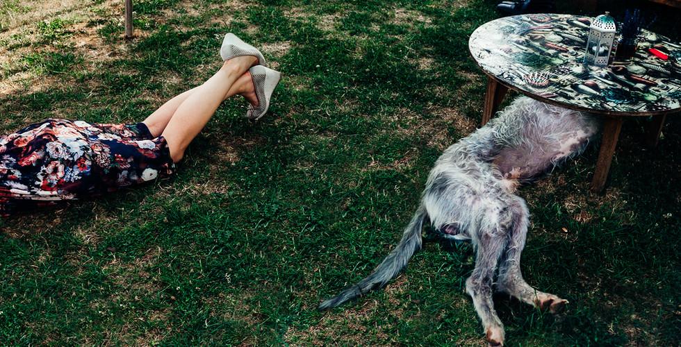 Wedding legs or dogs leg