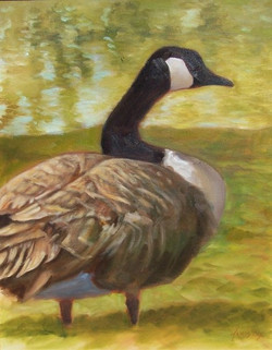 Summer Goose.  16_ x 20_.  Oil on canvas.  2007.  $200