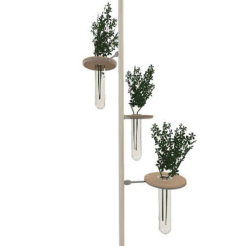 GreenUp - Vaso vetro