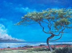 Stormy Paradise #3.jpg  16 in.jpg x 24 in.jpg  Acrylic on gessoboard.jpg  $500.jpg00.jpg  SOLD