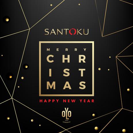 Merry Christmas_1.jpg