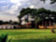 IMG_0162_edited.jpg