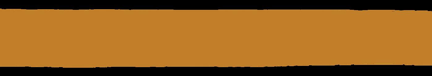 Orange banner_2.png