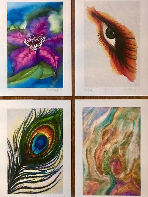 'Elements' ~ Set of 4 Ltd Ed Artwork Prints (100 only)