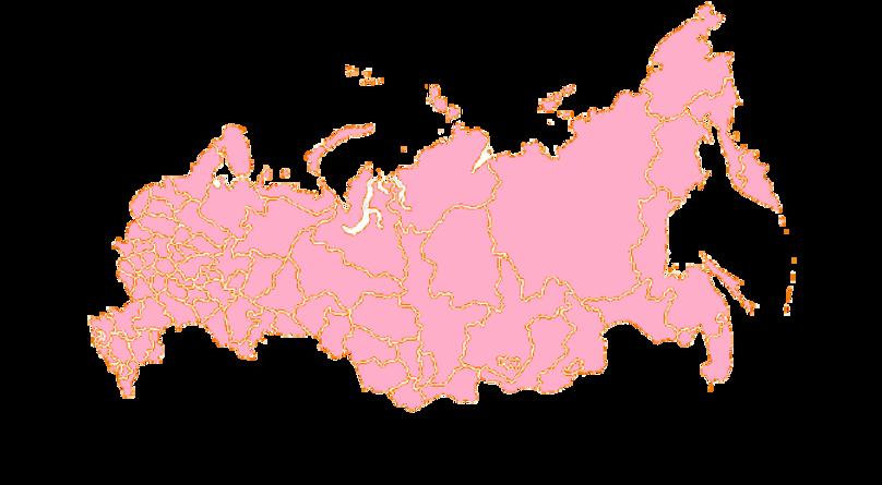 розовая_карта_россии-removebg-preview (1