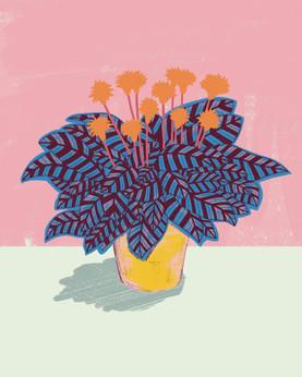 TIGER PLANT.jpg