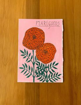 100DP-marigolds.jpg