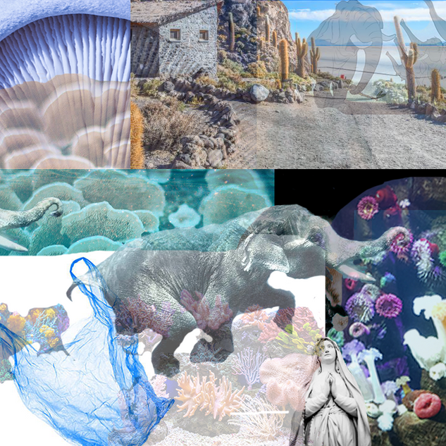 Elephant-Mushroom-World.png