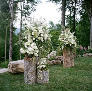 floralstumps.jpg