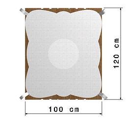 Quadro100x120Palo1.jpg