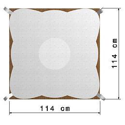Quadro114x114Palo1.jpg