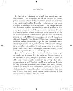 Le Dit des Egarés - page 17