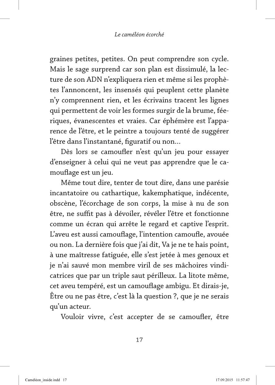 Le caméléon écorché - page 17
