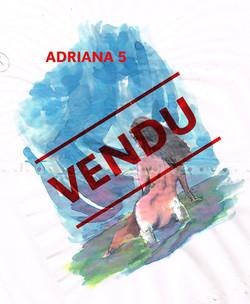 adriana_5