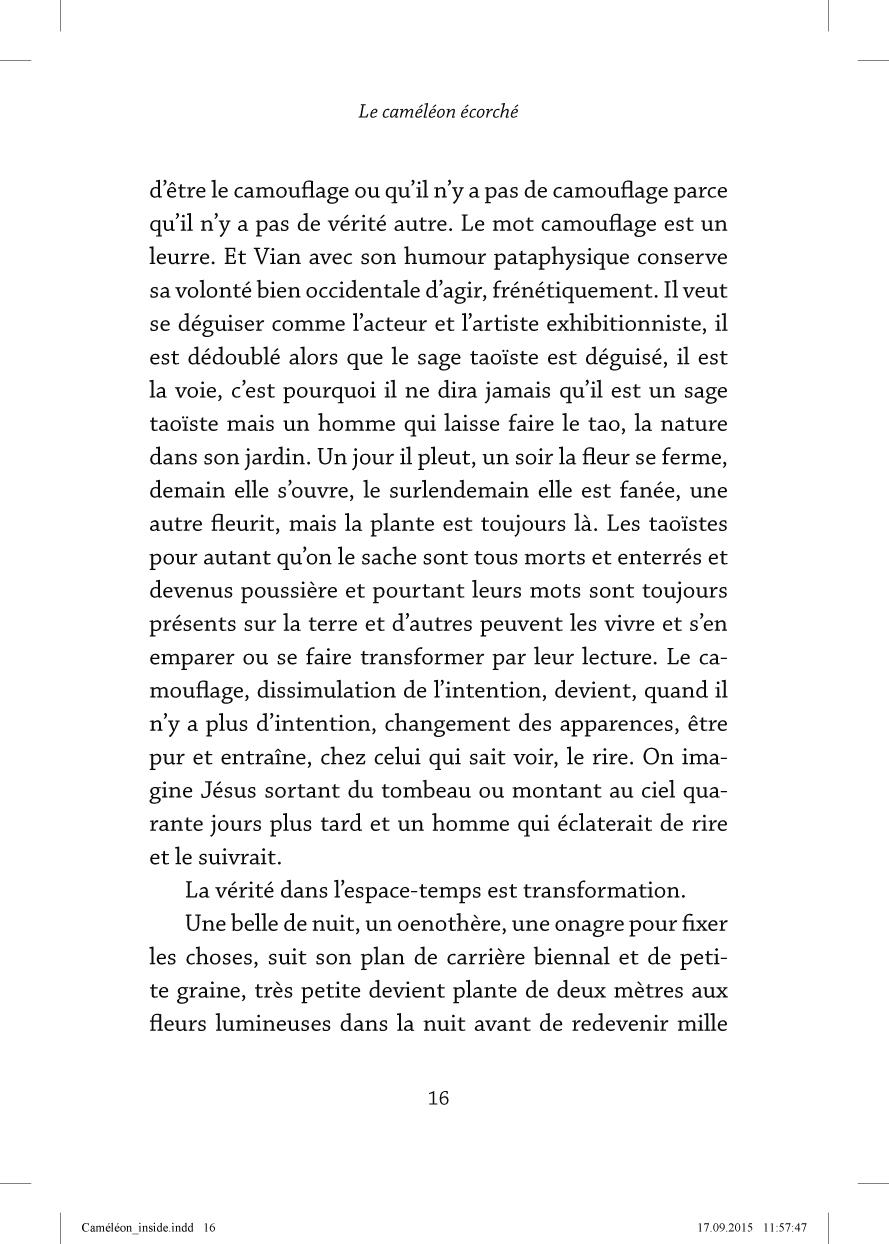 Le caméléon écorché - page 16