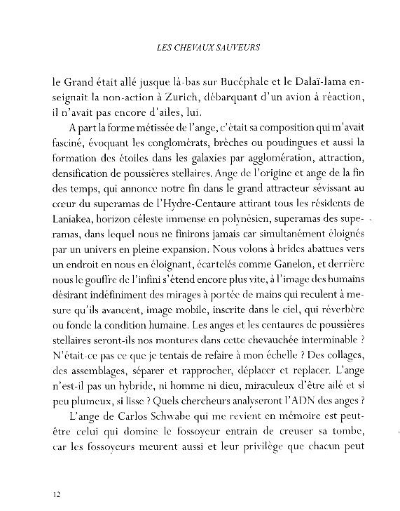 Les chevaux sauveurs - page 12