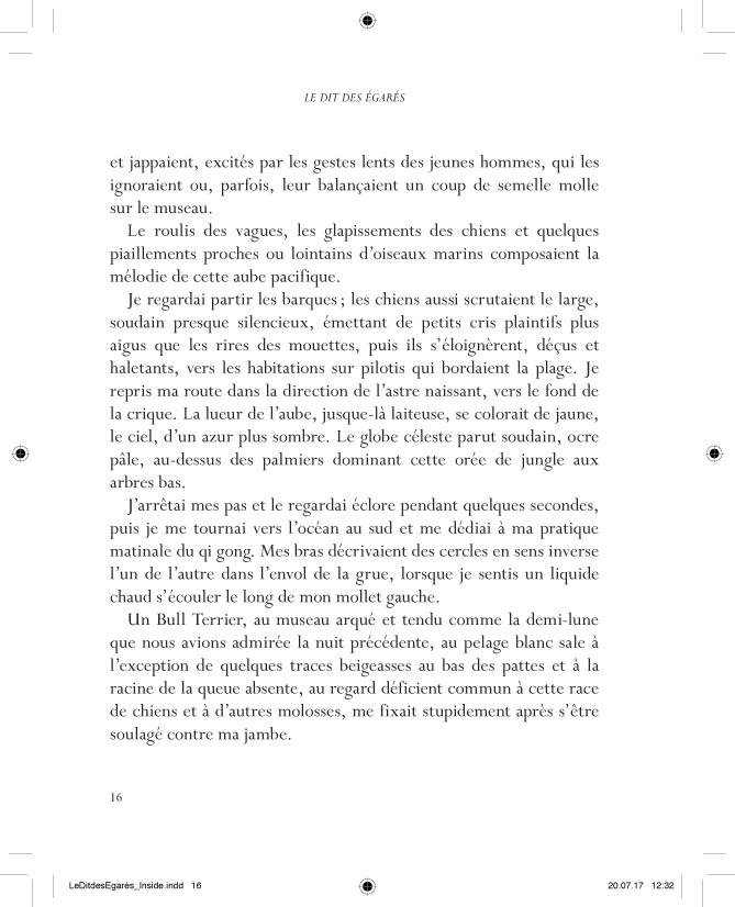 Le Dit des Egarés - page 16
