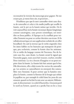 Le caméléon écorché - page 13