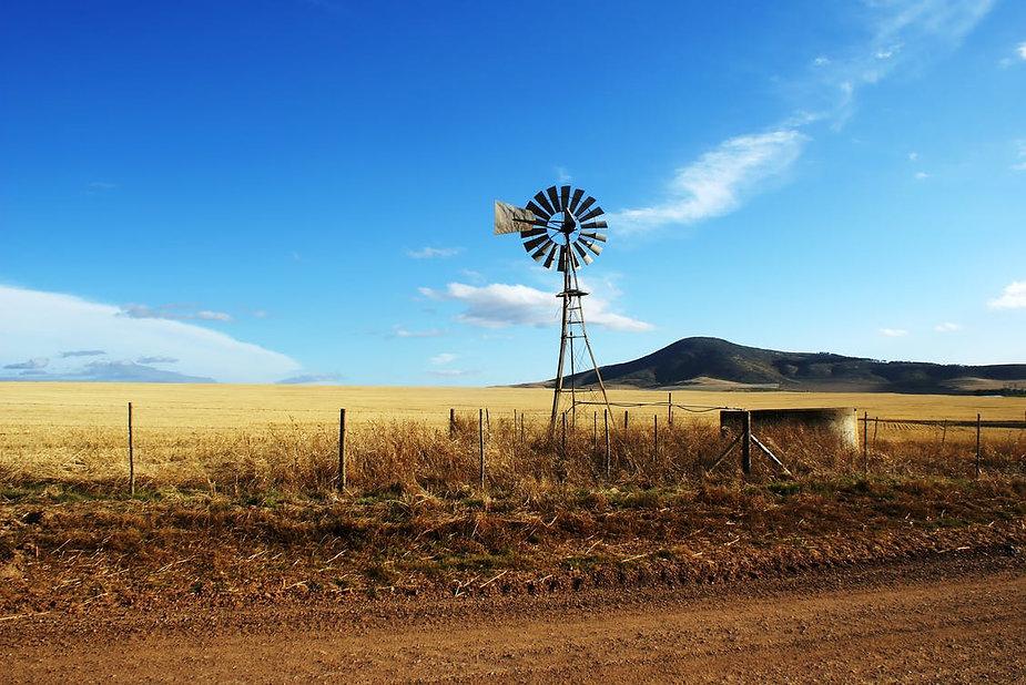 windmill.jpeg