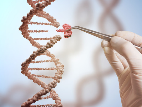 The Conversation - 'Why we need a global citizen assembly on genome editing'