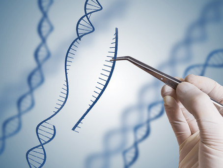 The first Global Citizens' Assembly on Genome Editing