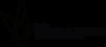 dbt-logo2.png