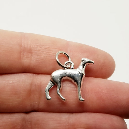 Greyhound Silver Charm