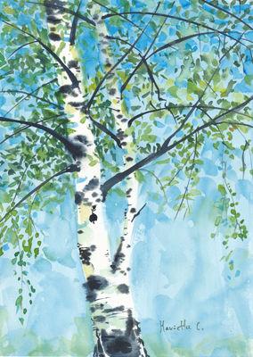 Aspen tree1_small.jpg