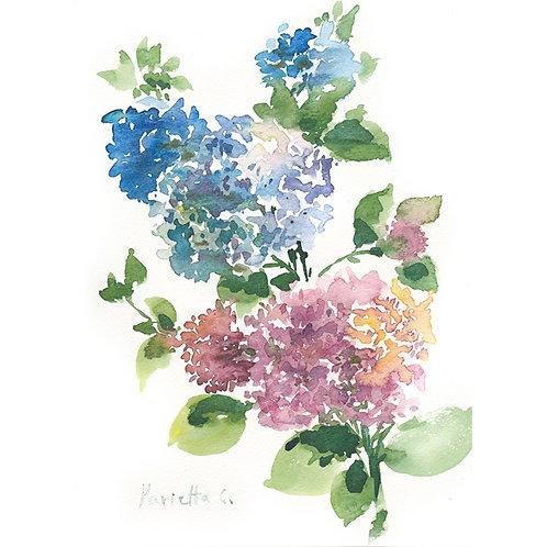 FLOWER SERIES 14