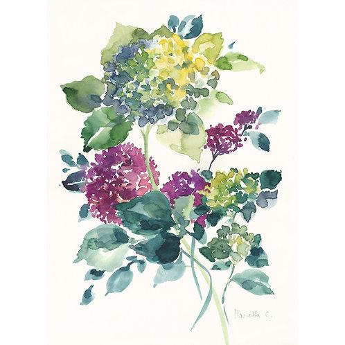 FLOWER SERIES 23