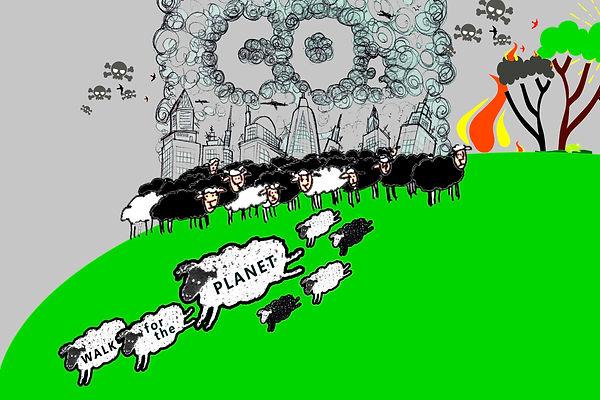 Desing Schafe Final 3.jpg