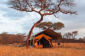 serengeti-kati-kati-tented-camp-tent-ext